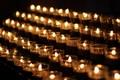 Соболезнования Международного Центра Рерихов по поводу трагедии в Кемерове