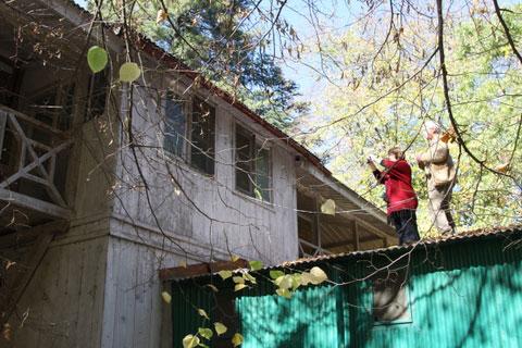 Архитекторы в усадьбе Рерихов в долине Куллу