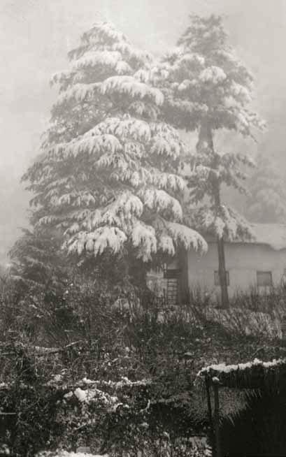 Долина Кулу зимой. 1930-е гг.