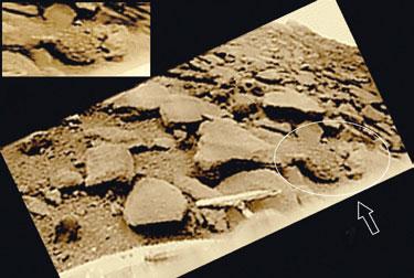 Фото 13. Сложная симметричная форма и другие особенности объекта «странный камень»