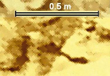 Фото 15. Фрагмент панорамы — фотоплан